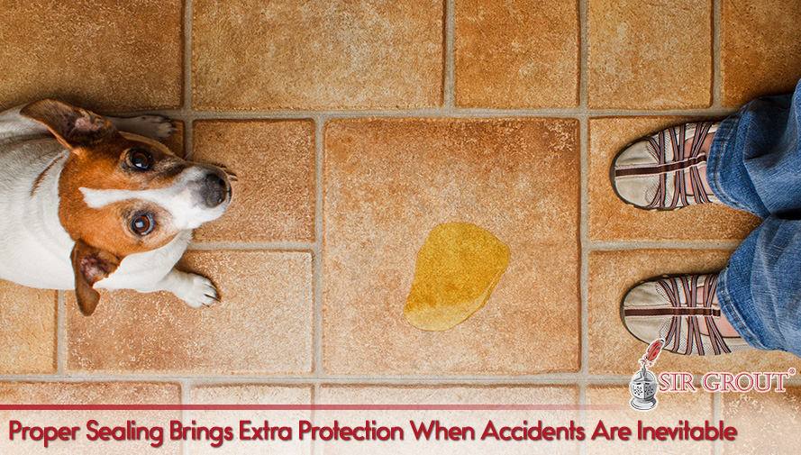 Proper Sealing Brings Extra Protection When Accidents Are Inevitable